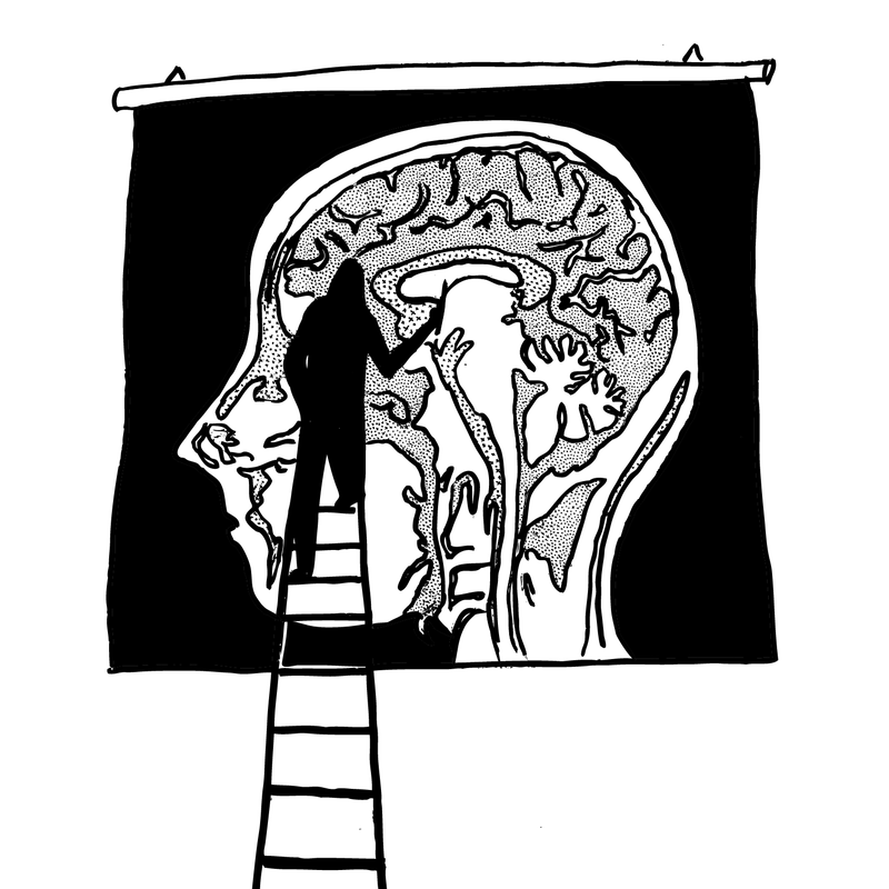 A drawing of a brain scan.