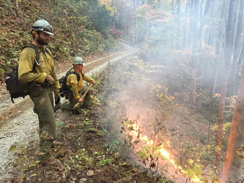 Near the Tennessee border, firefighters monitor a burnout operation along the Cheoah River