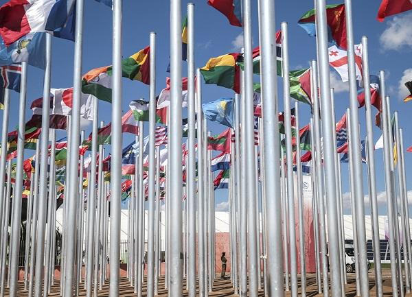 Image of Flags Outside Climate Conference