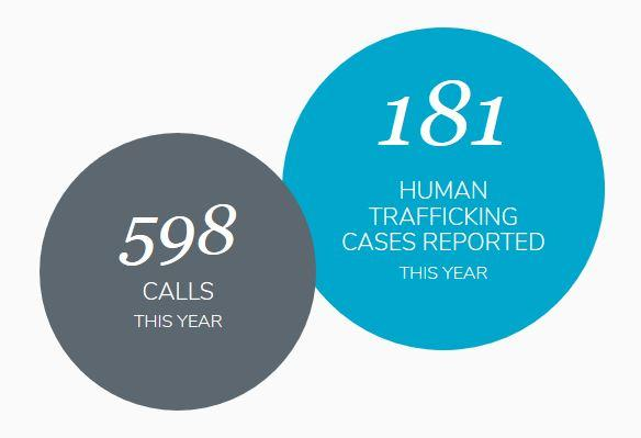 For North Carolina, 181 cases of human trafficking were reported to the National Hotline in 2016, which included 130 cases of sex trafficking and 41 cases of labor trafficking