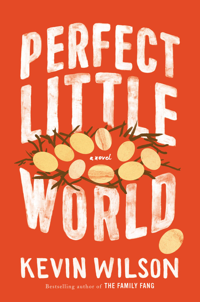 An image of the book cover for 'Perfect Little World'