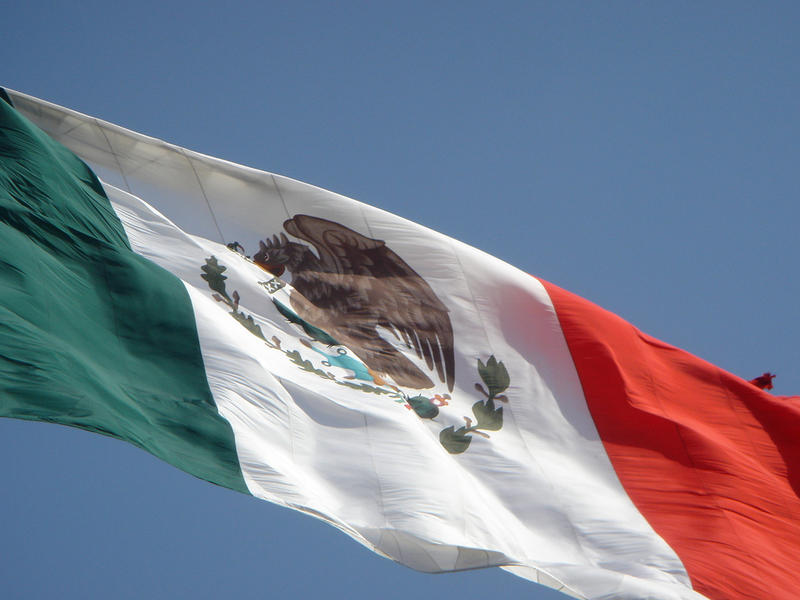 a photo of the Mexican flag
