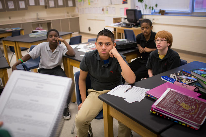More than 5,000 teen boys in 12 North Carolina counties have participated in the Wise Guys sex ed program.