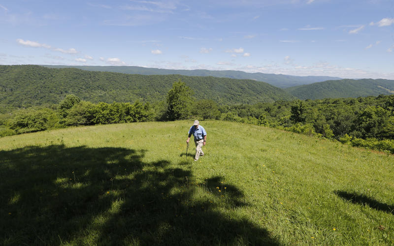 FILE - In a Tuesday June 6, 2017 file photo, hydrologist William K. Jones, walks up a mountain near the route of the proposed Atlantic Coast Pipeline in Bolar, Va.
