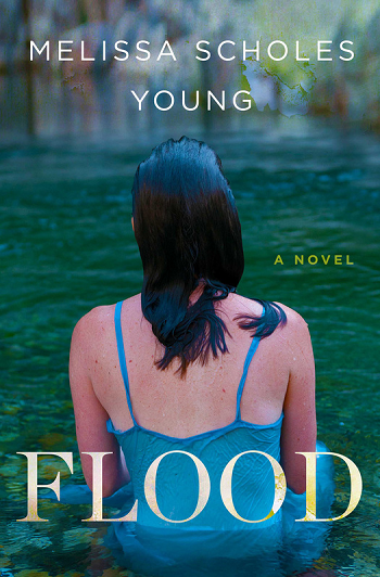 Cover of 'Flood'
