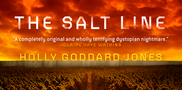 Cover of 'The Salt Line' by Holly Goddard Jones