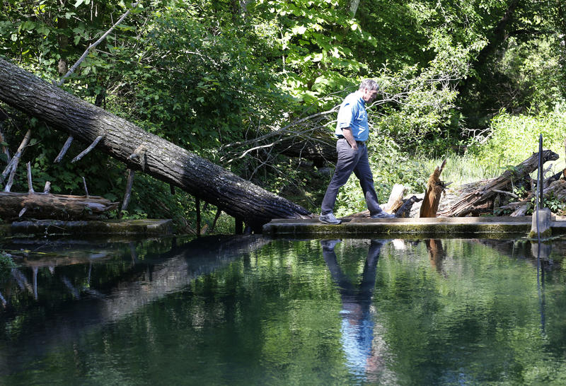 Virginia department of Environmental Quality director, David Paylor, walks along a retention pond for a spring near the route of the proposed Atlantic Coast Pipeline Tuesday, June 6, 2017, in Bolar, Va. Virginia's top environmental official insists the st