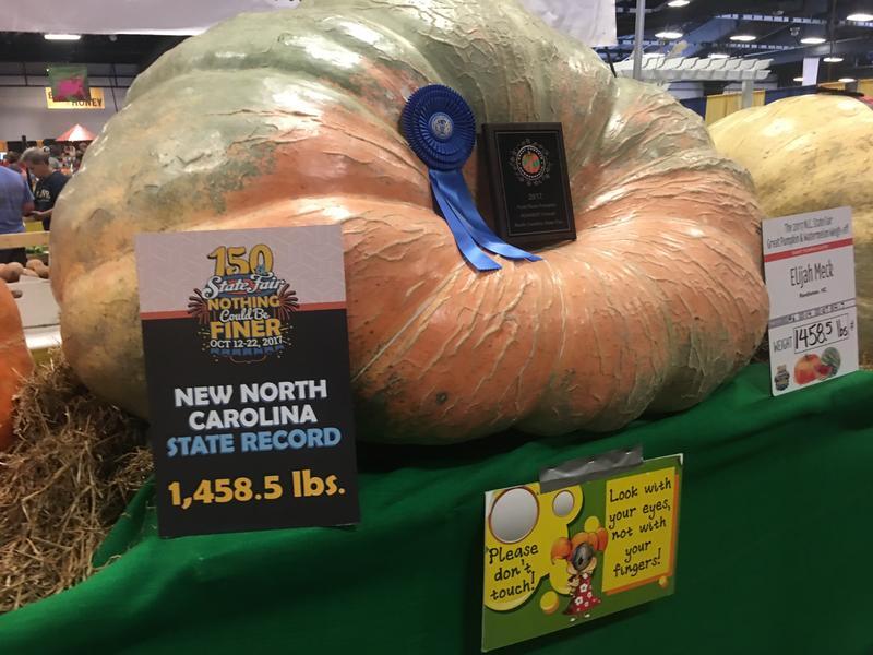 The record setting pumpkin at the 2017 North Carolina State Fair