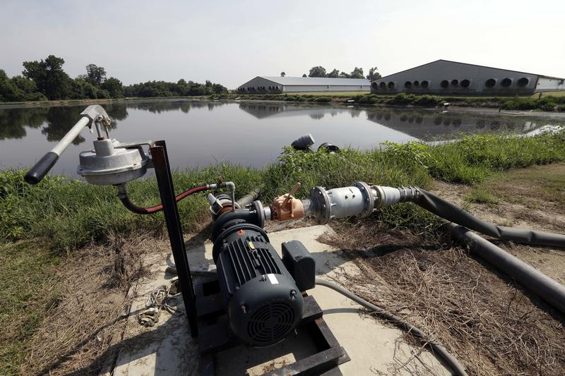 In this July 21, 2017, photo, hog waste pond pumping equipment is seen adjacent to hog houses at Everette Murphrey Farm in Farmville