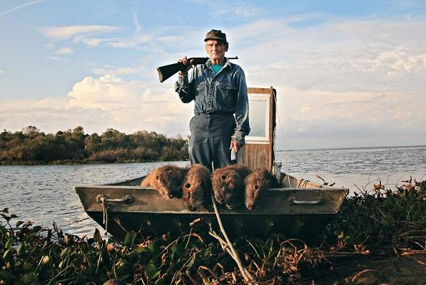 photo of a man with a shotgun standing in a small boat with several dead nutria (large rodents).