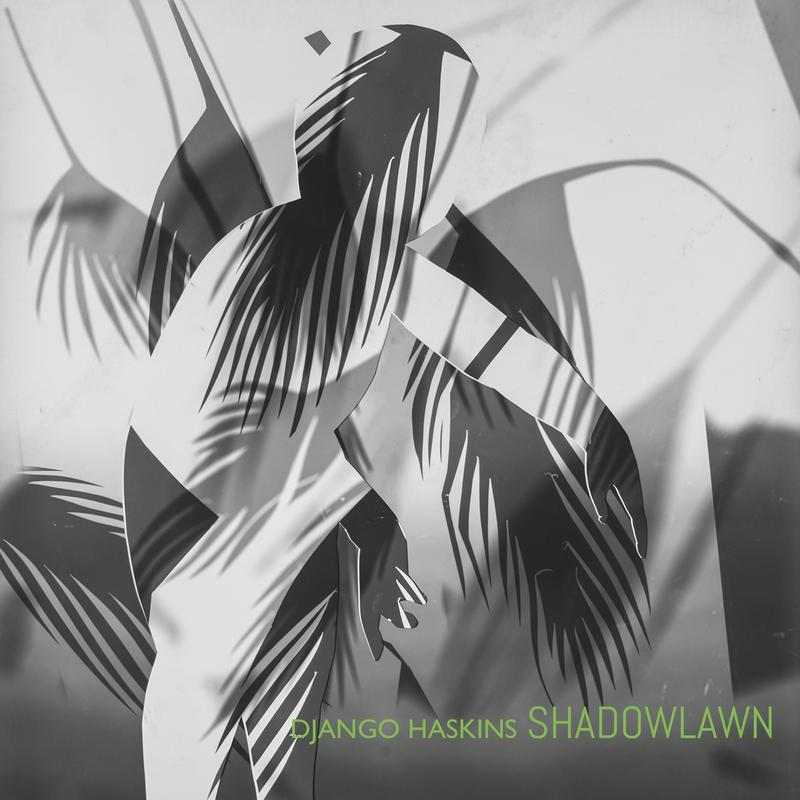 The album cover of 'Shadowlawn'