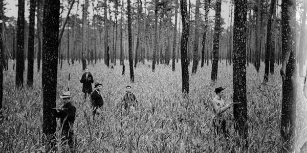 J.V. Hofmann and class measuring pine in reed bed at Hofmann Forest, about 1937. .