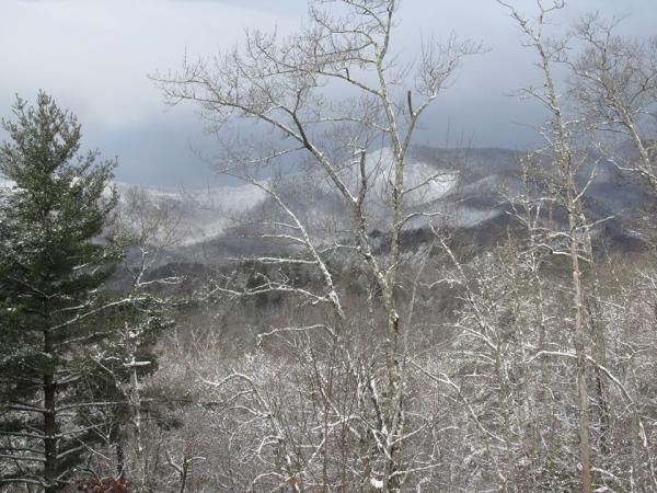 'Balsam Grove NC ...... View from our Front Porch' (Feb 13 2014)