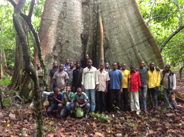 Godi Godar sees trees in the Congolese rainforest