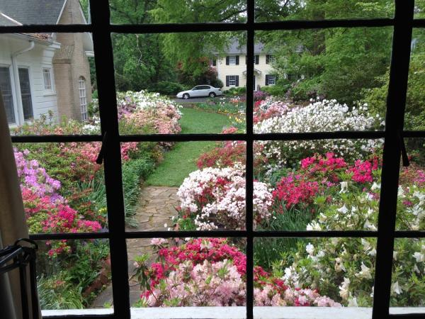 The view of the garden from inside the sisters home on Gimghoul Rd., Chapel Hill, NC