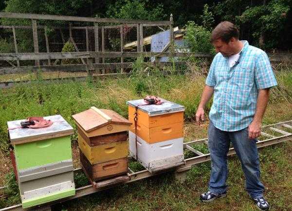 Marty Hanks with bee houses in his back yard.