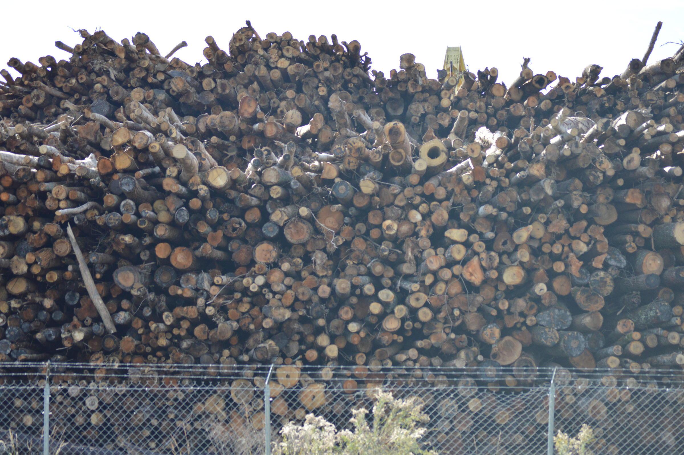 Lumber Mill Greensboro Nc