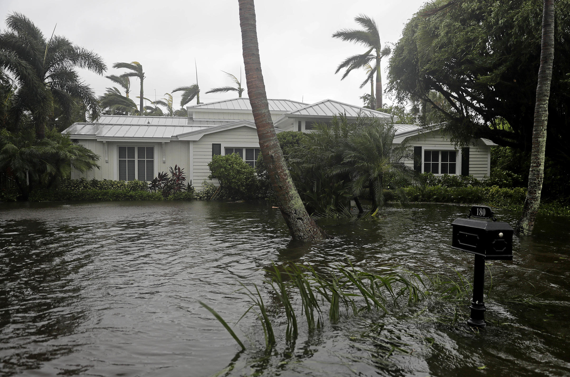 How to handle flood damage after a hurricane if you're uninsured