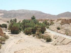 The Wadi Gharandal in Southern Jordan contains a spring that may have provided water to Roman soldiers living at this desert outpost in the 4th century.