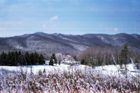 Cumberland Forest.