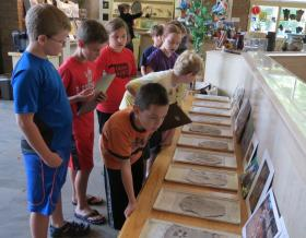 Students at the McClung Museum's fossil camp identify sample animal tracks.