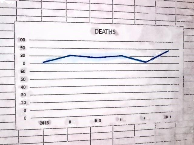 drowning death numbers