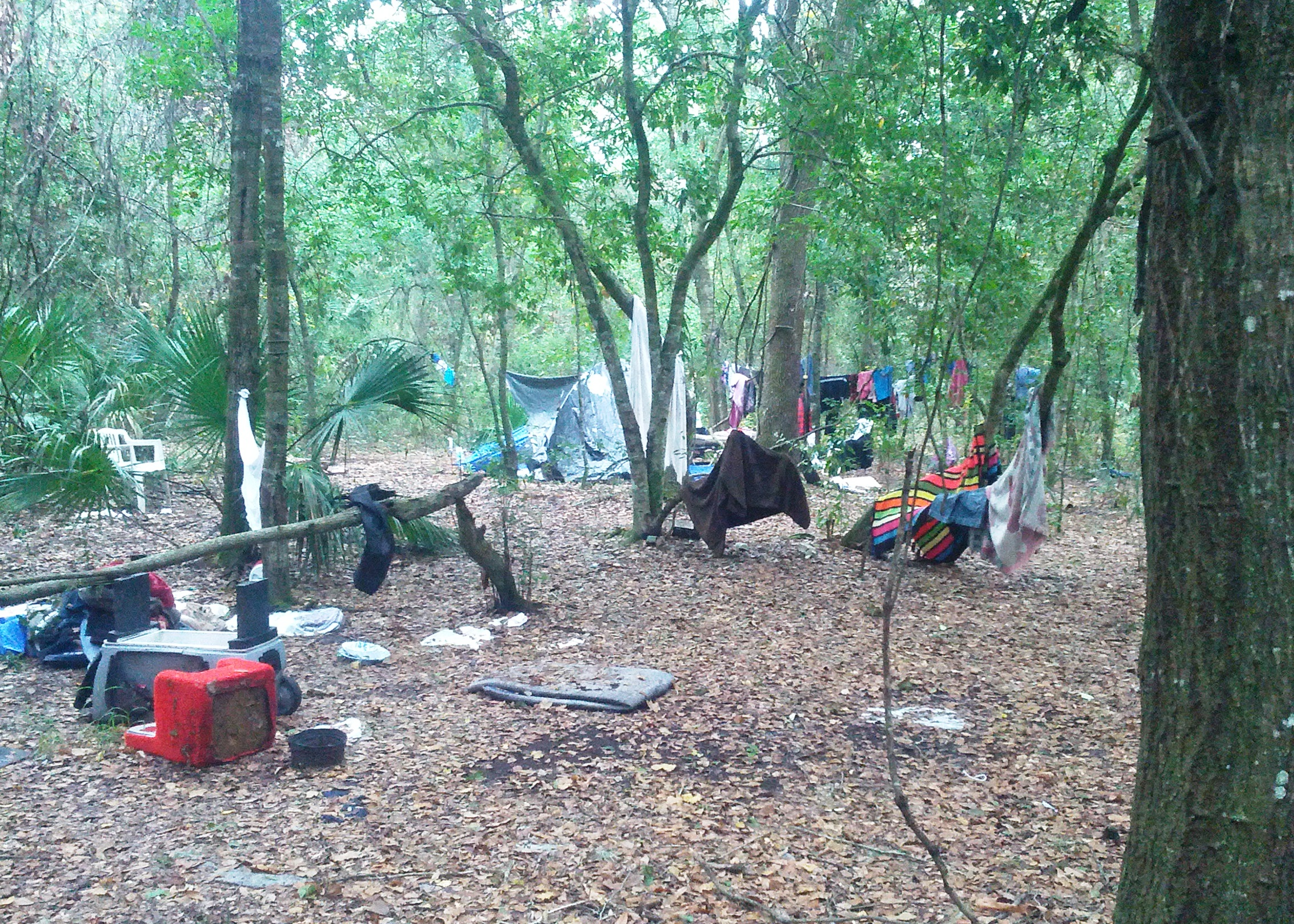 homeless vets camp where no shelters available | wusf news