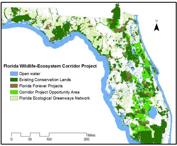 Do Wildlife Corridors Work A Conversation With Paul Beier