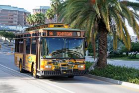 A Hillsborough Area Regional Transit Authority trolley drives through Harbour Island.