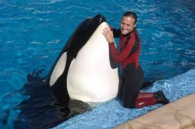 Trainer Dawn Brancheau poses with a killer whale at SeaWorld in 2005. Brancheau was killed by a similar whale, Tilikum, in 2010.