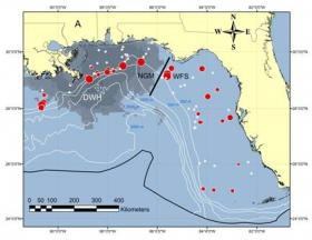 Prevalence of skin lesions at sampling sites in 2011:  White dots indicate 0 percent skin lesions, red circles are proportional in size to the percent frequency of lesions.  DWH is the site of the Deepwater Horizon oil spill, and gray shading is the surface extent of oil as seen from aircraft and satellites.