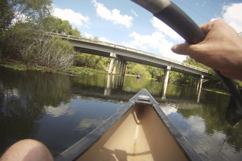 The Morris Bridge was the first sign of humans we saw on almost five miles of the Hillsborough River.
