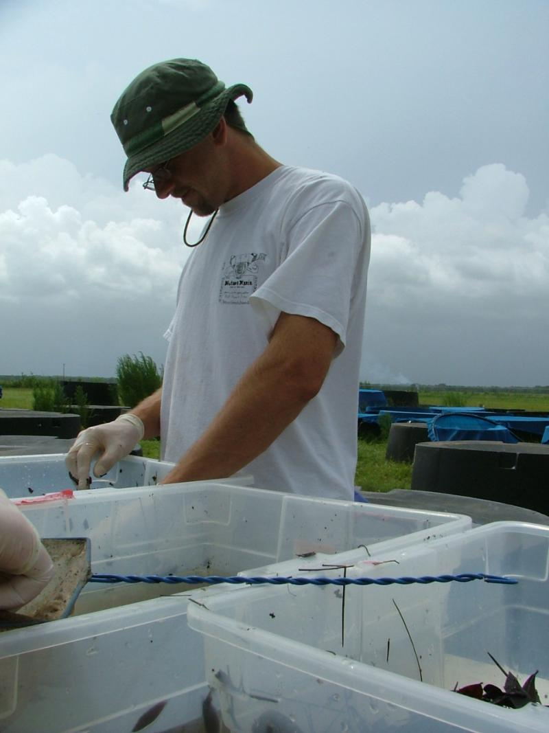 USF Biology Assoc. Professor Jason Rohr working on test samples