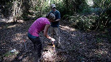 Graduate students tag underground anomalies in Boot Hill Cemetery