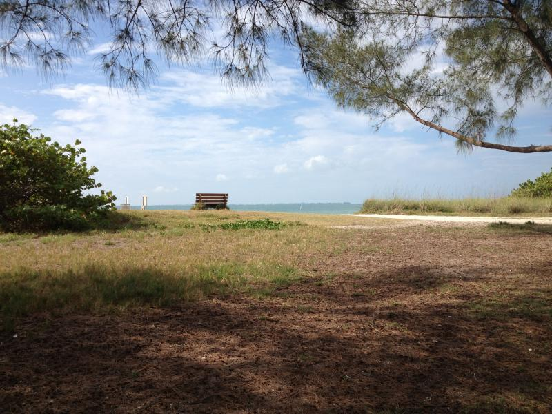 """Librarian Angela Pietras, St. Pete Public Library: """"I love to sneak off to Fort Desoto when I can. I love reading there. It's very peaceful with the waves and the sand, you can snooze when you need to, and you can also maybe catch a dolphin or two."""""""