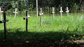 Crosses mark Boot Hill Cemetery on the grounds of the Dozier School for Boys