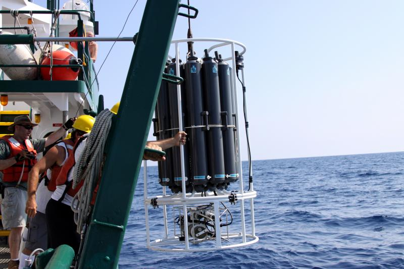 USF researchers in the Gulf following the 2010 BP oil spill
