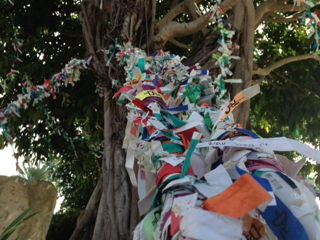 """Wishes"" are tied to the Wish Tree in the Avant-Garden."