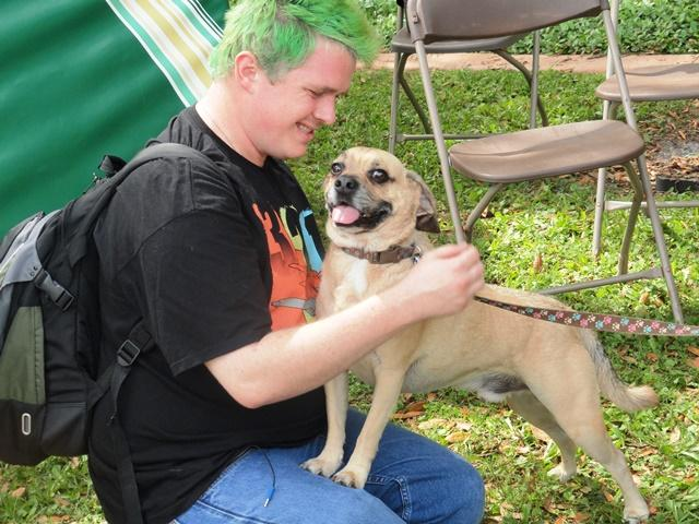Tucker greets a USF student. The 5 year-old puggle and the other dogs, most rescues, are part of Therapy Pet Connection, Incorporated.