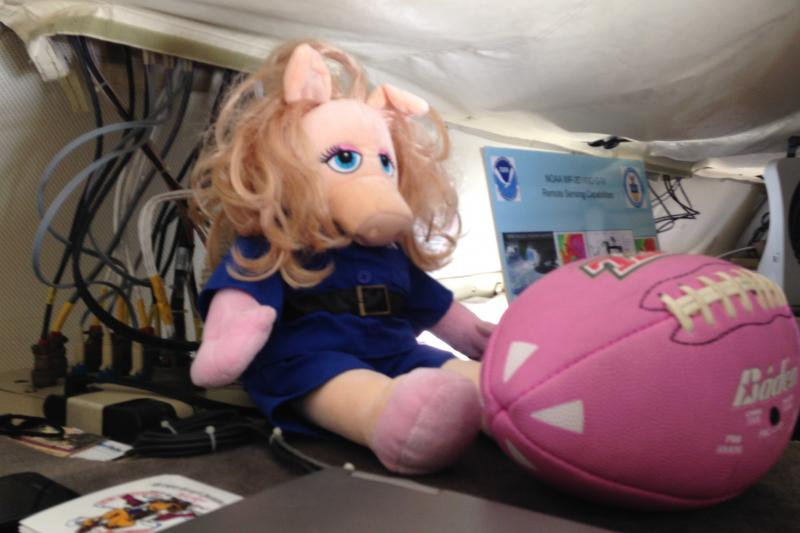 "A ""Miss Piggy"" mascot joins the crew on every flight the hurricane hunter aircraft takes into storms."