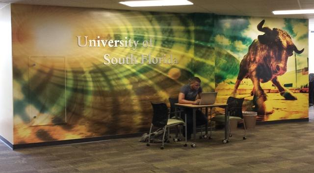 A student studies in the newly renovated Learning Commons on the second floor of the USF Library.