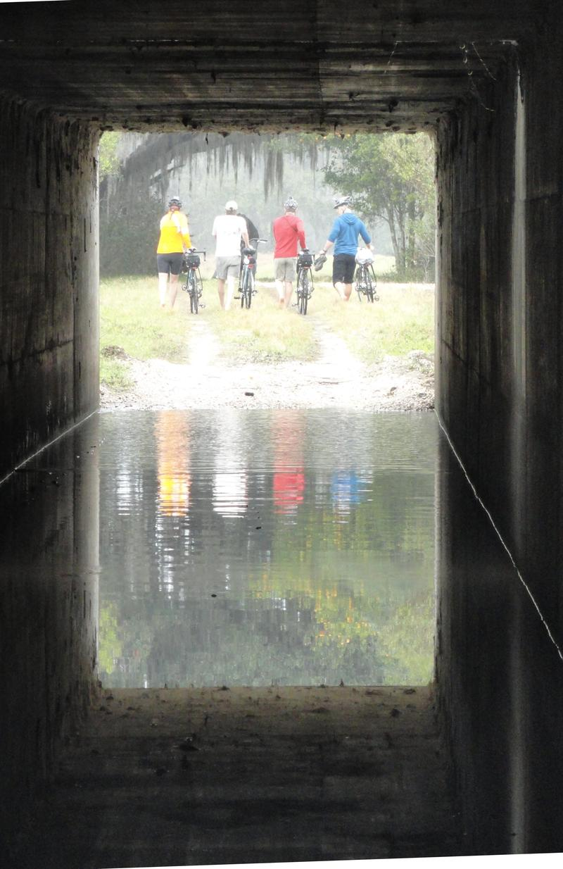 Members of the expedition use a cattle crossing underneath Interstate 4 in Polk County