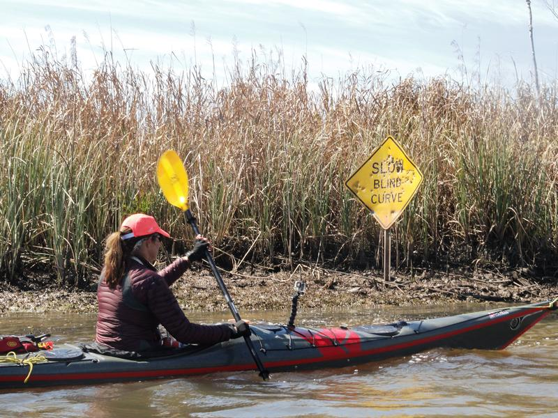 Mallory Lykes Dimmitt going around a blind curve connecting the St. Mark's River with the Apalachicola