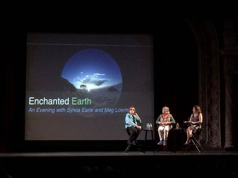 Dr. Sylvia Earle, Dr. Meg Lowman and WUSF's Susan Giles Wantuck