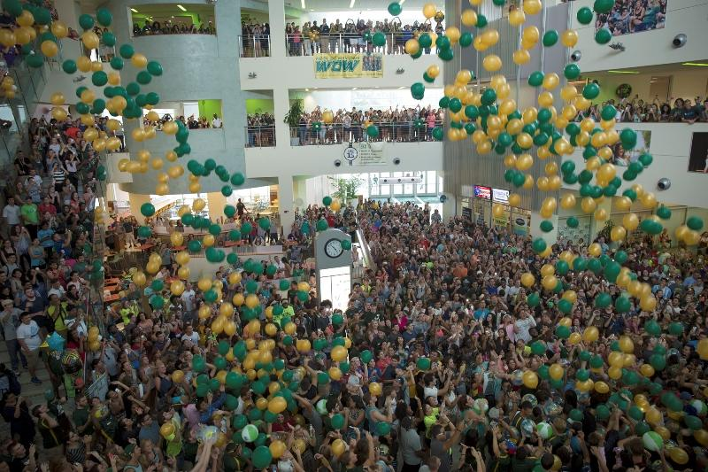 Balloons in USF's green and gold drop from the ceiling of the Marshall Student Center at Thursday's kick-off pep rally.