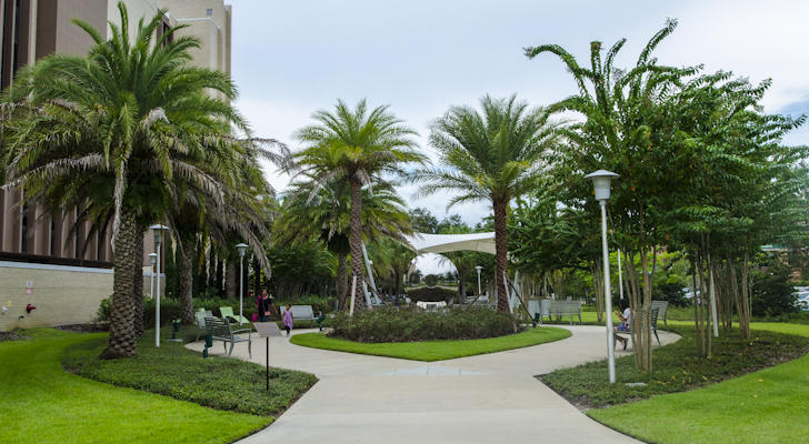 "The now renamed ""John F. Germany Legacy Park"" near the library on the USF Tampa campus."