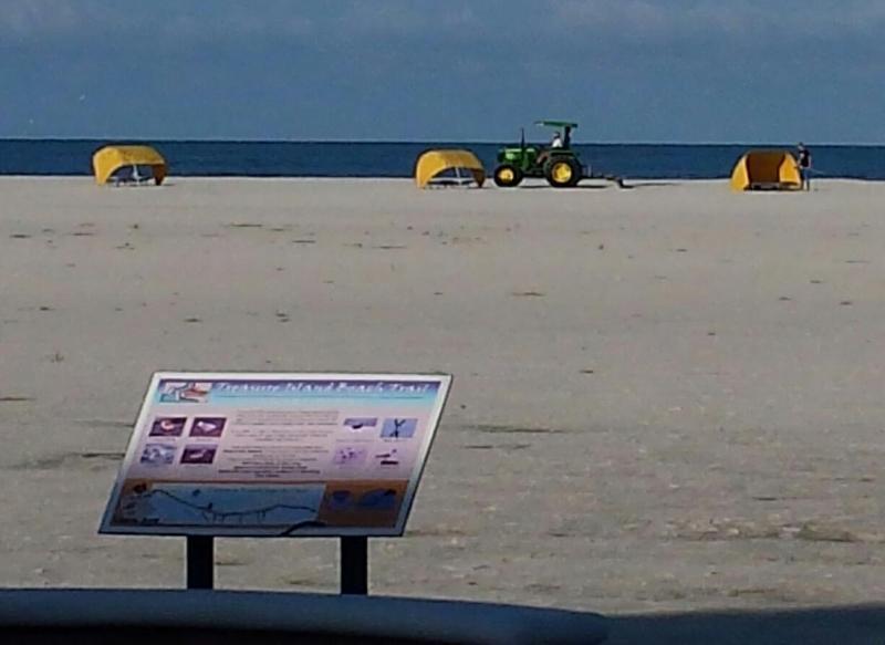 Crews rake the beaches of Treasure Island, Thursday morning.