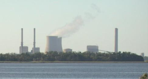 Crystal River nuclear generator