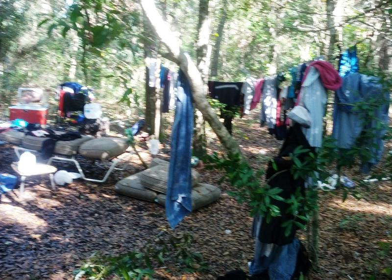 One of the homeless camps where veterans have taken refuge in Pasco County's woods.