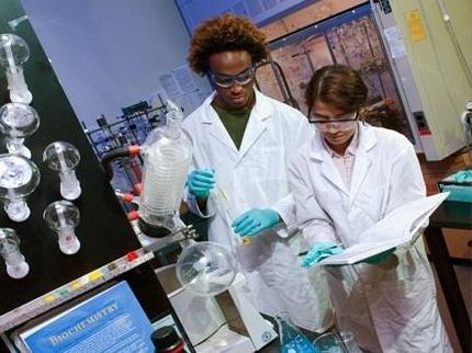 Students in a USF laboratory.